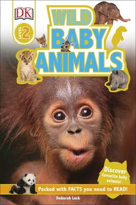 Wild baby animals   TheBookSeekers