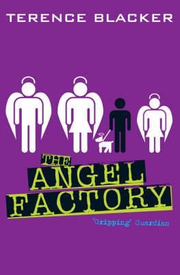 The angel factory | TheBookSeekers