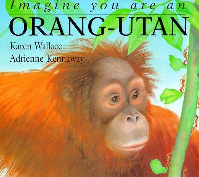 Imagine you are an orang-utan