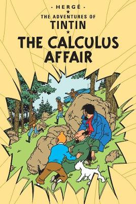 The Calculus Affair | TheBookSeekers