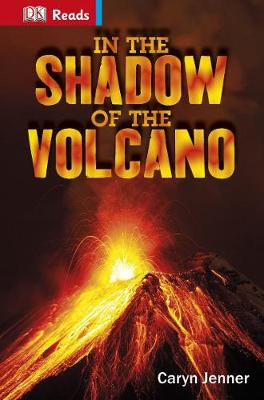 In the shadow of the volcano | TheBookSeekers