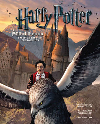 Harry Potter: A Pop-Up Book: Based on the Film Phenomenon | TheBookSeekers