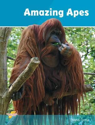 Amazing apes