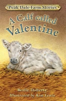 A calf called Valentine