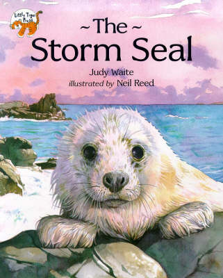 The storm seal